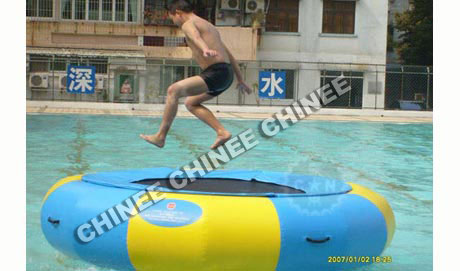 T10-140 Inflatable Water Slides