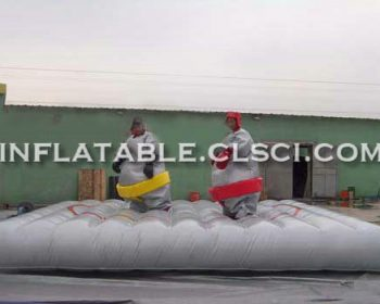 T11-1148 Inflatable Sports