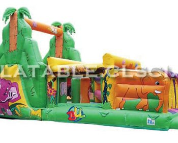 T11-265 Inflatable Sports