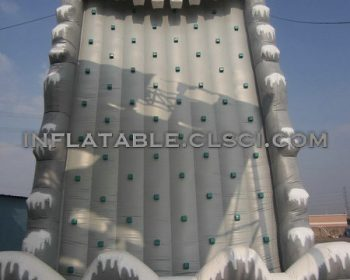 T11-607 Inflatable Sports