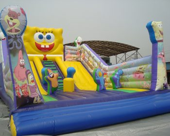 T8-842 inflatable slide