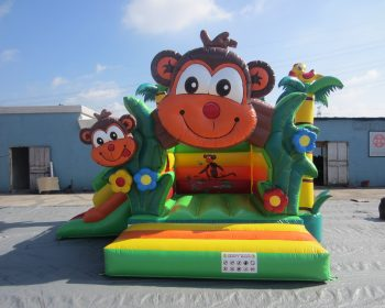 T5-3205 Inflatable Bouncer